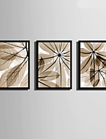 E-HOME® Framed Canvas Art, Light Colored Transparent Leaves Framed Canvas Print Set Of 3