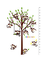 Wall Stickers Wall Decals Style Cartoon Monkey Park Measure Your Height PVC Wall Stickers