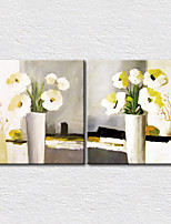 Canvas Set Floral/Botanical ModernTwo Panels Canvas Square Print Wall Decor For Home Decoration