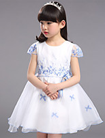 Girl's Going out Embroidered DressCotton / Polyester Summer Blue / Red