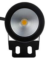 12v הוביל 10W מנורת מזרקה מתחת למים עמיד למים כיתה IP68 בטיחות בלחץ נמוך