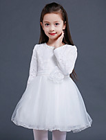 A-line Knee-length Flower Girl Dress - Lace / Satin / Tulle Long Sleeve Jewel with Flower(s) / Pearl Detailing