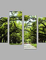 Impressão em tela sem moldura Paisagem Moderno,4 Painéis Tela Qualquer Forma Impressão artística wall Decor For Decoração para casa