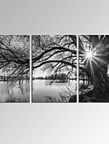 Leinwand-Set Abstrakte Landschaft Modern,Drei Paneele Leinwand Horizontal Druck-Kunst Wand Dekoration For Haus Dekoration