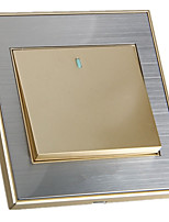 interruptor da tomada de parede do ouro champagne