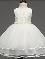 Девичий Платье На каждый день Хлопок / Искусственный шёлк Однотонный Все сезоны Длинный рукав