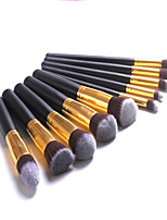 10 Blush Brush / Eyeshadow Brush / Brow Brush / Eyeliner Brush Professional / Travel / Full Coverage Plastic