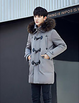 Men's Down Coat,Simple Casual/Daily Solid-Polyester White Duck Down Long Sleeve Hooded Blue / Black / Gray
