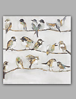 Hand-Painted Abstract / Animal Birds 100% Hang-Painted Oil PaintingModern / Classic One Panel Canvas Oil Painting For Home Decoration