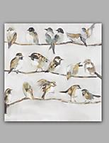 Handgemalte Abstrakt / Tier Ölgemälde,Modern / Klassisch Ein Panel Leinwand Hang-Ölgemälde For Haus Dekoration