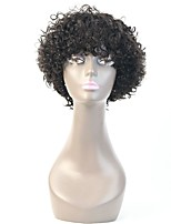 Short Curly Hair Human Hair Bob Wigs Unprocessed Virgin Brazilian Machine Made Human Hair None Lace Wigs