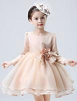 A-line Knee-length Flower Girl Dress - Organza / Satin Long Sleeve Jewel with Flower(s)