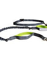 Nylon Reflective Dog Leash And Belt