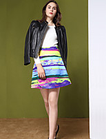Women's Petite A Line Rainbow Patchwork Skirts,Going out Vintage High Rise Above Knee Zipper Polyester Micro-elastic Fall