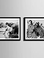 Животные Холст в раме / Набор в раме Wall Art,ПВХ материал Черный Коврик входит в комплект с рамкой For Украшение дома Рамка Art