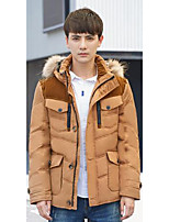 Men's Regular Down Coat,Simple Casual/Daily Solid-Polyester White Duck Down Long Sleeve Hooded Yellow