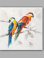 Dipinta a mano Astratto / Animali Dipinti ad olio,Modern Un Pannello Tela Hang-Dipinto ad olio For Decorazioni per la casa