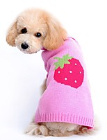 Cat Dog Sweater Dog Clothes Winter Spring/Fall Fruit Cute Casual/Daily Pink