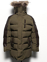 Men's Padded Coat,Simple Casual/Daily Solid-Polyester Polyester Long Sleeve Hooded Blue / Green