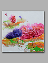 Hand-Painted Abstract / Floral/Botanical 100% Hang-Painted Oil Painting,Modern One Panel Canvas Oil Painting For Home Decoration