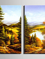 E-HOME Stretched Canvas Art Forest River View Decoration Painting  Set Of 2