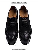 Черный / Коричневый-Мужской-Для офиса / На каждый день / Для вечеринки / ужина-Кожа-На плоской подошве-Others / Удобная обувь-Туфли на
