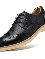 Черный / Коричневый-Мужской-На каждый день-Кожа-На плоской подошве-Others-Туфли на шнуровке