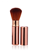 1 Powder Brush Others Professional / Travel Metal Face Others