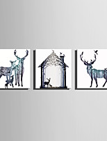 lienzo conjunto Animal Estilo europeo,Tres Paneles Lienzos Cuadrado lámina Decoración de pared For Decoración hogareña