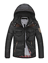 Men's Regular Padded Coat,Simple / Street chic Plus Size / Casual/Daily / Formal Solid-Polyester Polyester Long Sleeve HoodedBlack /