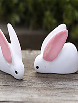 E Microblogging Moss Micro-Landscape Decoration Decoration Big Ears Little Rabbit DIY Materials