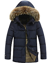 Men's Regular Down Coat,Simple Casual/Daily Solid-Polyester Polypropylene Long Sleeve Hooded Blue / Green