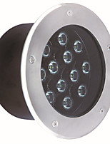 LED underground light outdoor lawn waterproof spotlights MM-13901
