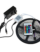 5M HRY SMD3528 RGB Waterproof 24Keys IR Remote Control 2A Power 300 LED IP65 LED Strip Light(DC12V)