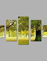 Unframed Leinwand-Druck Landschaft Modern,Fünf Panele Leinwand Jede Form Druck-Kunst Wand Dekoration For Haus Dekoration
