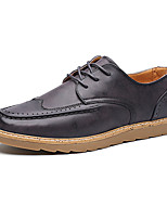 Men's Oxfords Fashion Bullock Shoes Casual Leather Shoes Flat Heel Lace-up Black / Brown / Purple Walking EU39-43