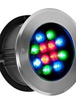 Yuhong lighting Проводной Others LED buried lights черный увядает