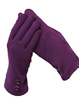 Warm Touch Screen Gloves (Purple)