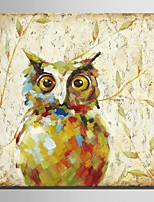 Mini Size E-HOME Oil painting Modern Owl Pure Hand Draw Frameless Decorative Painting