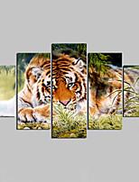Unframed Leinwand-Druck Tier Modern,Fünf Panele Leinwand Jede Form Druck-Kunst Wand Dekoration For Haus Dekoration