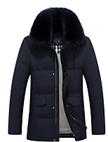Men's Regular Down Coat,Simple Casual/Daily Solid-Polyester White Duck Down Long Sleeve Shirt Collar Blue