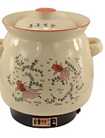 OEM Verkabelt Others Automatic Chinese medicine medicine pot Weiß