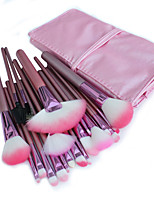 22 Makeup Brushes Set Nylon Hair Professional / Portable Wood Handle Face/Eye / Lip Pink