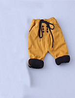 Boy's Casual/Daily Solid PantsCotton Spring / Fall Green / Yellow