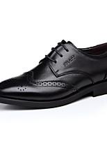 Черный / Коричневый-Мужской-Для офиса / Для вечеринки / ужина-Кожа / Синтетика-На плоской подошве-Others / Удобная обувь-Туфли на шнуровке