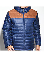 Men's Regular Down Coat,Simple Casual/Daily Solid-Polyester White Duck Down Long Sleeve Hooded Blue / Green