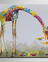 Ручная роспись Животное Картины маслом,Modern Европейский стиль 1 панель Холст Hang-роспись маслом For Украшение дома