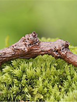 Moss Micro-Landscape Decoration Decoration Simulation Branches DIY DIY Lvzhi Decoration Materials