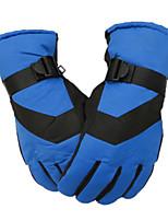 Ski Gloves Full-finger Gloves / Winter Gloves Women's / Men's Activity/ Sports Gloves Keep Warm / Windproof / Fleece LiningSki &
