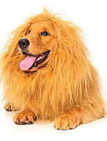Dog Wig Brown / Gold Dog Clothes Summer / Spring/Fall Solid Cosplay / Lion Mane